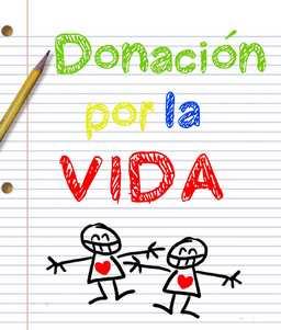 carta de petición de donación